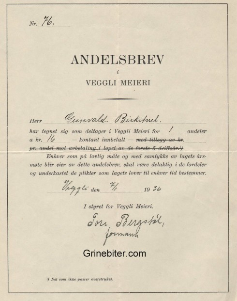Veggli Meier Aksjebrev