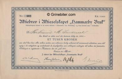 Hammarby Bruk Stock Certificate Aksjebrev