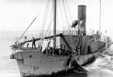 Hvalskip som tar in fangsten