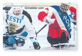 Paralympics Sledge Hockey