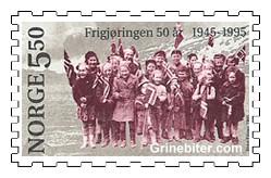 Jublende barn med norske flagg