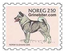 Norsk elghund (grå)